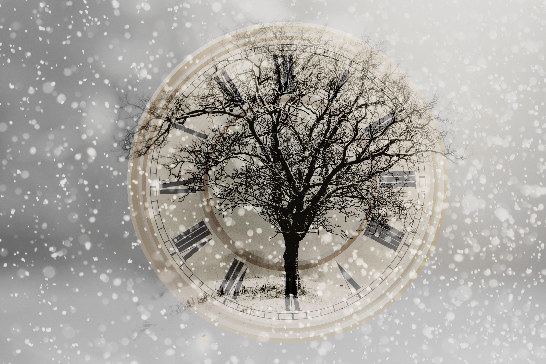 snow-2910676